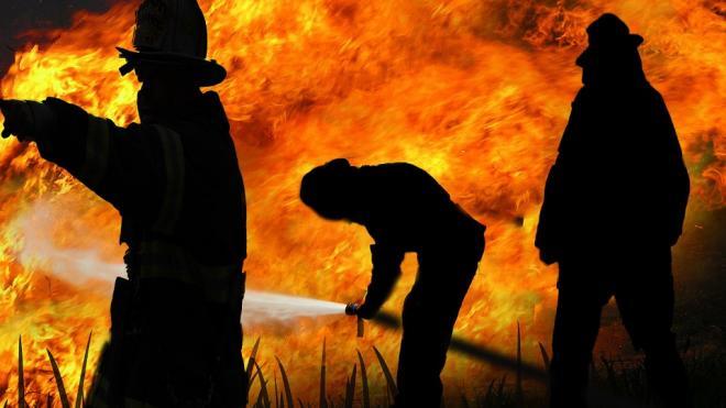 В Красносельском районе после пожара в доме нашли трупы женщины, кошки и двух собак
