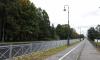 Петербуржцы стали реже оставлять автомобиль на велодорожках