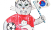 В Петербурге стащили кота-футболиста