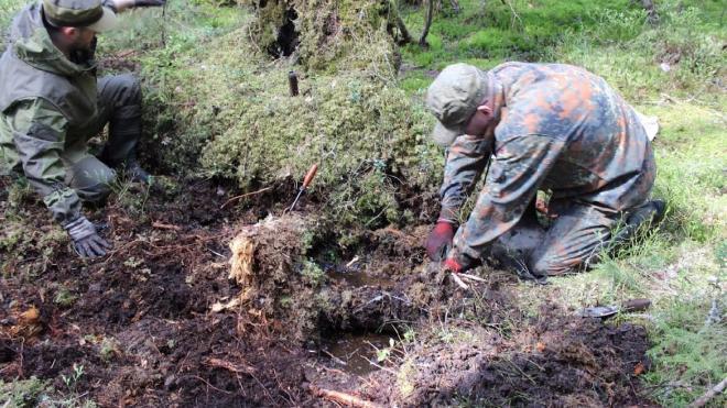 Останки трех красноармейцев обнаружили в Гатчинском районе