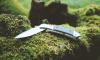 Двух мужчин пырнули ножом в парке на улице Козлова
