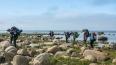 Любители туризма отправятся в экологический маршрут ...