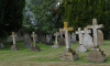 Воинские захоронения около Экспофорума до сих пор не обследовали