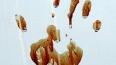 Новые подробности зверского убийства семьи в Туле