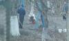 Появилось фото жестокого убийства барана во дворе детского сада в Симферополе
