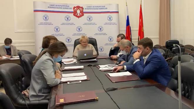 Аллу Егорову назначили врио председателя горизбиркома Петербурга