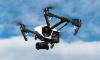 Во Флориде отец решил сфотографировать детей с дрона, чем спас им жизнь