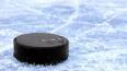"Нападающий молодежной команды хоккейного клуба ""Металлург"" ..."