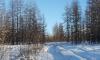 В Якутии автобус с вахтовиками опрокинулся в кювет