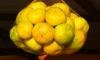 Россельхознадзор заморозил 24 тонны клементинов из Марокко с личинками мух