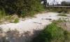Жители Всеволожской улицы пожаловались на сливы бетонных отходов у домов