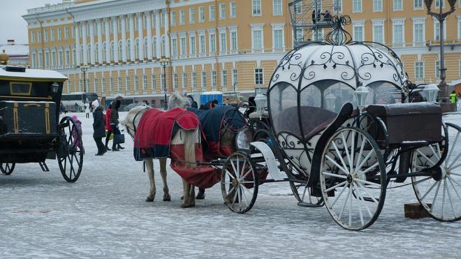 В четверг в Петербург вернется снегопад