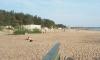 Нудисты Петербурга и Финляндии объединятся против закрытия пляжа в Дюнах