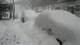 Для проверки качества уборки снега в Петербурге открыта ...