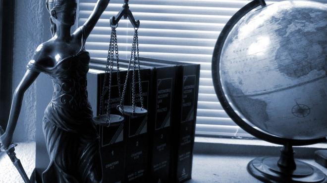 Прокуратура не утвердила заключение по делу художницы Юлии Цветковой