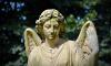 Неизвестные повредили надгробие на Красненьком кладбище в Петербурге