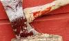 В Ленобласти рецидивист зверски убил двух педагогов на глазах детей