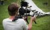 Журналисты ТАСС и Russia Today получили серьезные осколочные ранения в Сирии