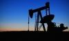 """""""Татнефти"""" и """"Газпрому"""" рекомендовано приостановить поставки нефти в Белоруссию"""