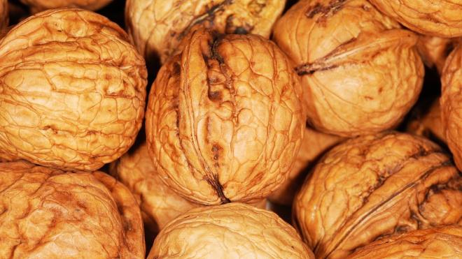 """Ленту"" оштрафуют за отказ покупать орехи"