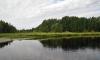 В Черной речке всплыл труп неизвестного мужчины