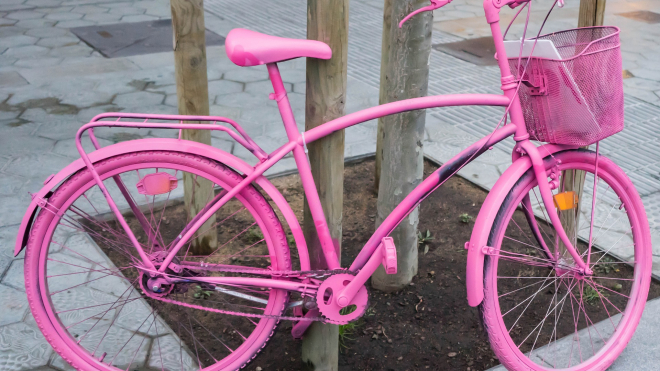 Граф Орлов на розовом велосипеде изнасиловал женщину в Ленобласти