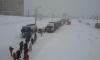 Фотографии снежного катаклизма в Омске заполонили Интернет