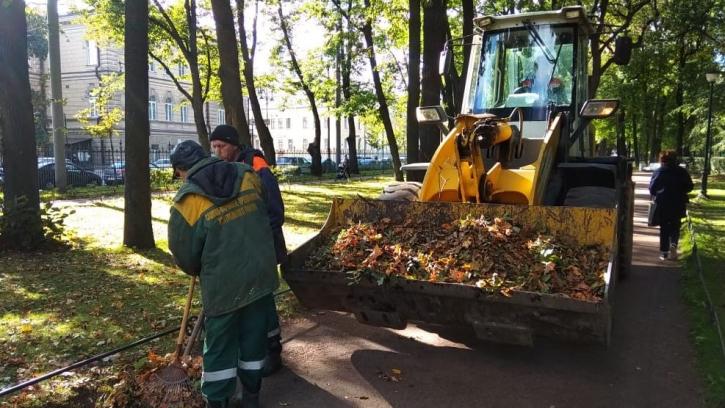 С 1 октября в Петербурге начался осенний месячник по благоустройству