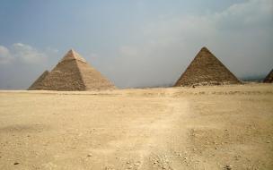 Ученые выяснили, как в гробницах Египта появились миллионы мумий птиц