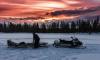 Воры похитили снегоход за1,1 млн рублей у пенсионера в Выборгском районе