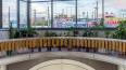 В метро Петербурга рассказалио станции с зимним садом