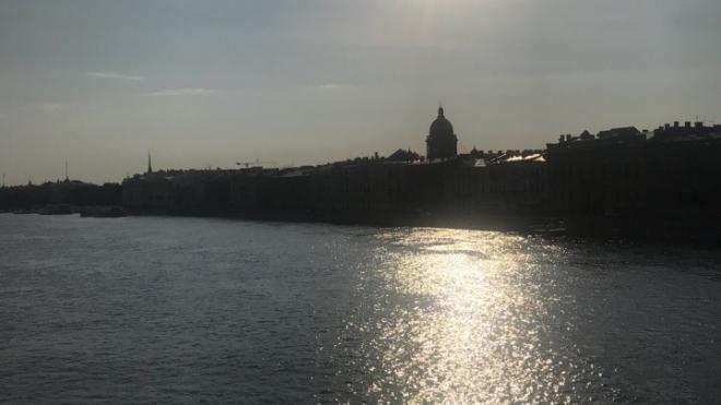 В Петербурге прошел массовый заплыв