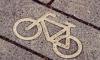 ФАС остановила торги на размещение велодорожек в Купчино