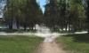 Парк Юннатов залило кипятком из-за прорыва трубы