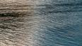 Спасатели ищут пропавшего на реке Руе 41-летнего мужчину