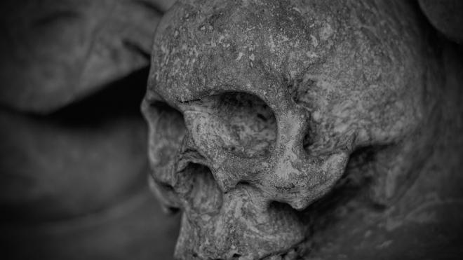 В Александровском парке рабочие нашли скелеты расстрелянных евреев времен ВОВ
