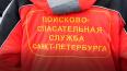 В Петербурге создадут регламент деятельности поисковых ...