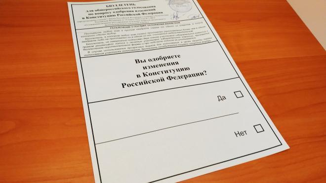Стало известно, сколько петербуржцев проголосовали за поправки