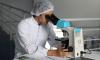 Химики СПбГУ разработали высокочувствительный сенсор для определения ртути