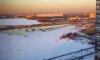 В Петербурге водохранилище стало зеленым и неприятнопахнущим