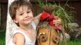 Ребенка, похищенного под Владимиром, зверски убили ...