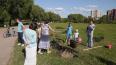 В Петербурге рассмотрят причисление парка Малиновка ...