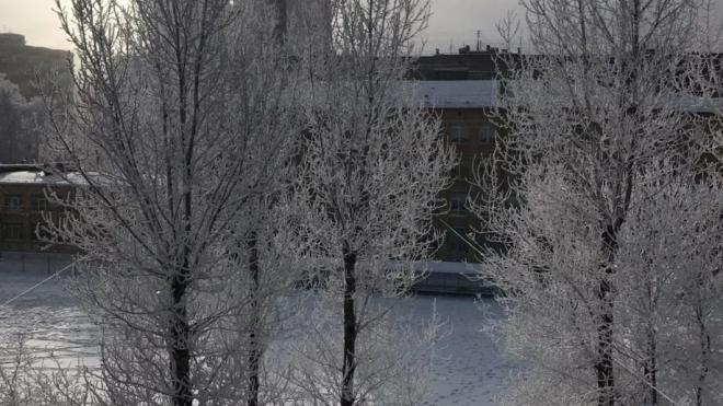В воскресенье в Петербурге ожидается долгожданное потепление