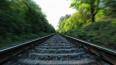 """У станции """"Новая деревня"""" поезд сбил упавшего на пути му..."""