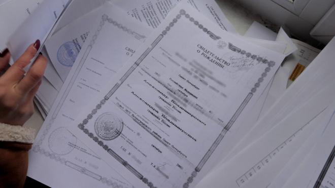 Администрация Петроградки не нашла документов в заброшенном садике. В исчезновении бумаг обвинили Piter.TV