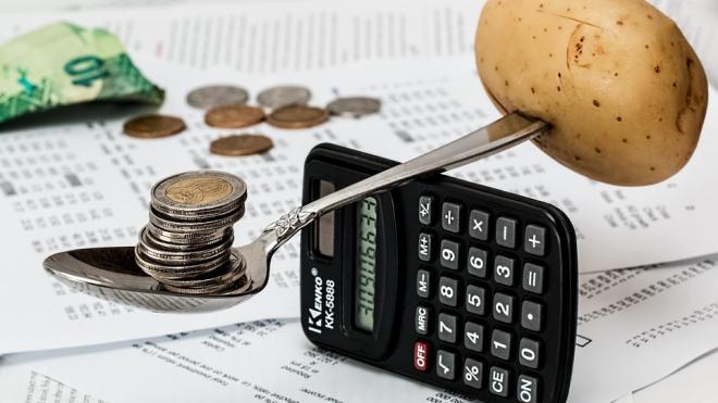 Законодательное Собрание Петербурга вынесло законопроект, регулирующий доходы чиновников