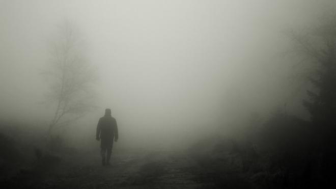 МЧС: в субботу Ленобласть накроет туман