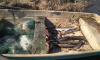 В Ленобласти пресечена незаконная рыбалка в период нереста