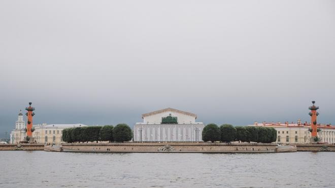 Влажное атлантическое тепло пришло в Петербург 23 ноября