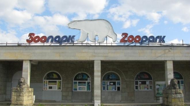В Ленинградский зоопарк приедут японские макаки
